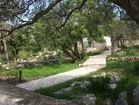 A pathway to the beach through the garden of the villa Dionysus
